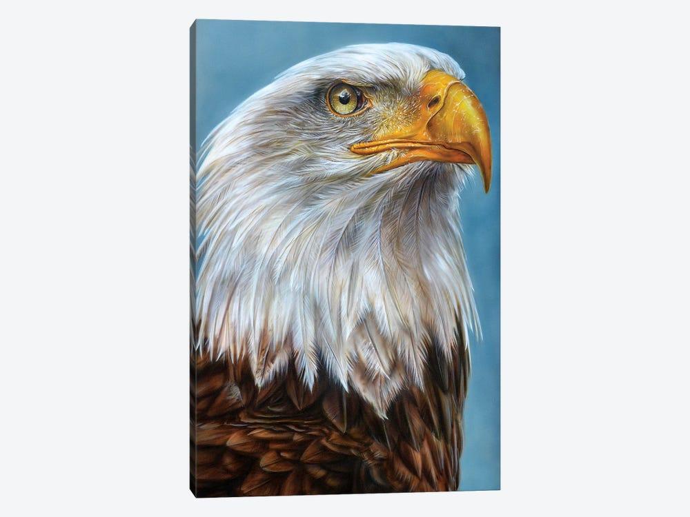 Eagle by Derek Turcotte 1-piece Canvas Art Print