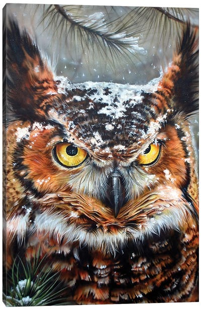 Great Horned 2 Canvas Art Print