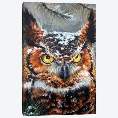 Great Horned 2 Canvas Print #DET25} by Derek Turcotte Canvas Art