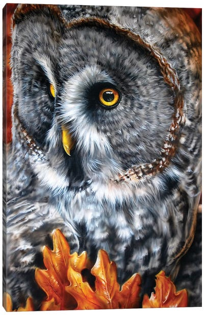 Greaty Grey Canvas Art Print