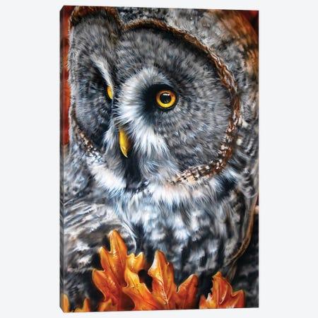 Greaty Grey Canvas Print #DET26} by Derek Turcotte Canvas Artwork