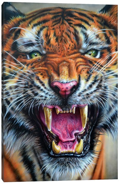 Angry Growl Canvas Art Print
