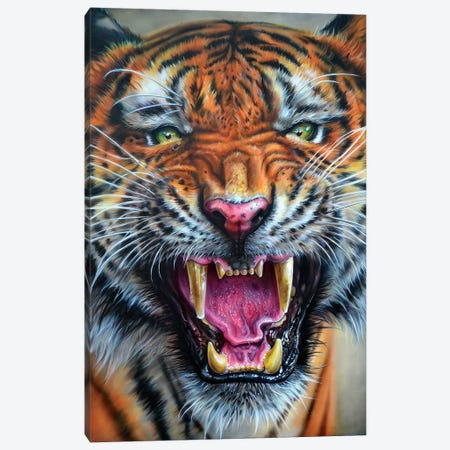 Angry Growl Canvas Print #DET2} by Derek Turcotte Canvas Artwork