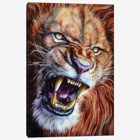 Lion Canvas Print #DET32} by Derek Turcotte Canvas Art