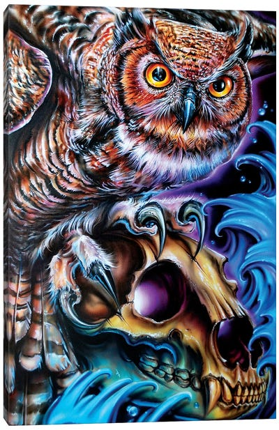 Owl And Bear Skull Canvas Art Print