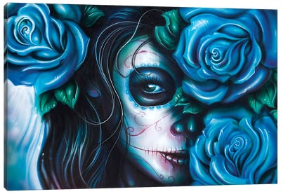 Skull Girls III Canvas Art Print