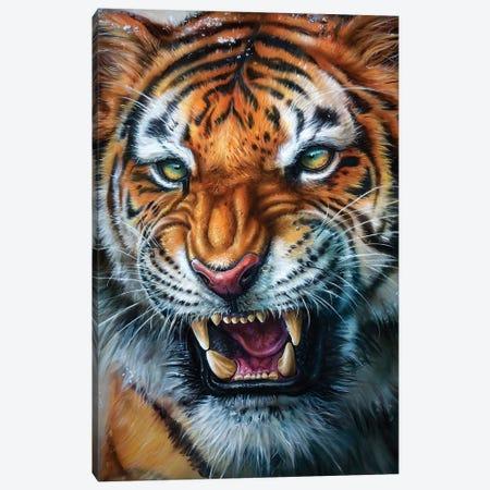 Tiger Canvas Print #DET51} by Derek Turcotte Canvas Artwork