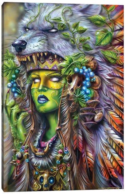 Forest Druid Canvas Art Print