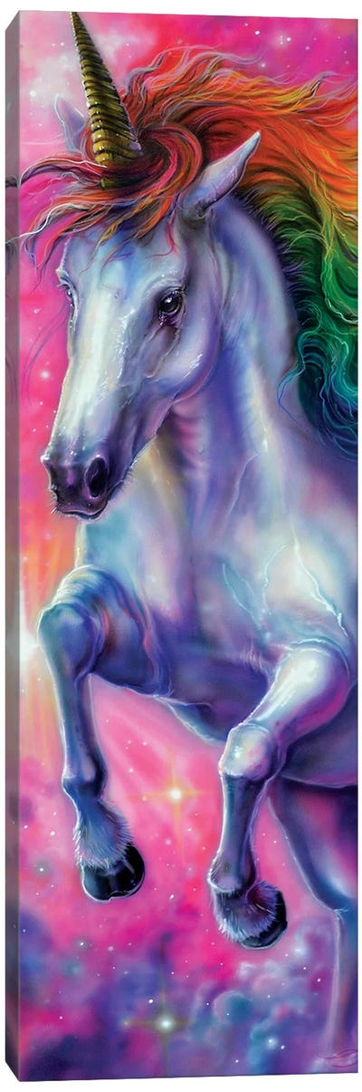 Space Unicorn Canvas Art Print