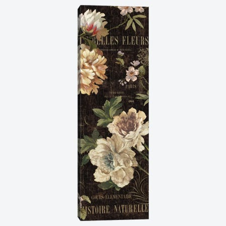 Fleurs Antique II Canvas Print #DEV10} by Deborah Devellier Canvas Wall Art