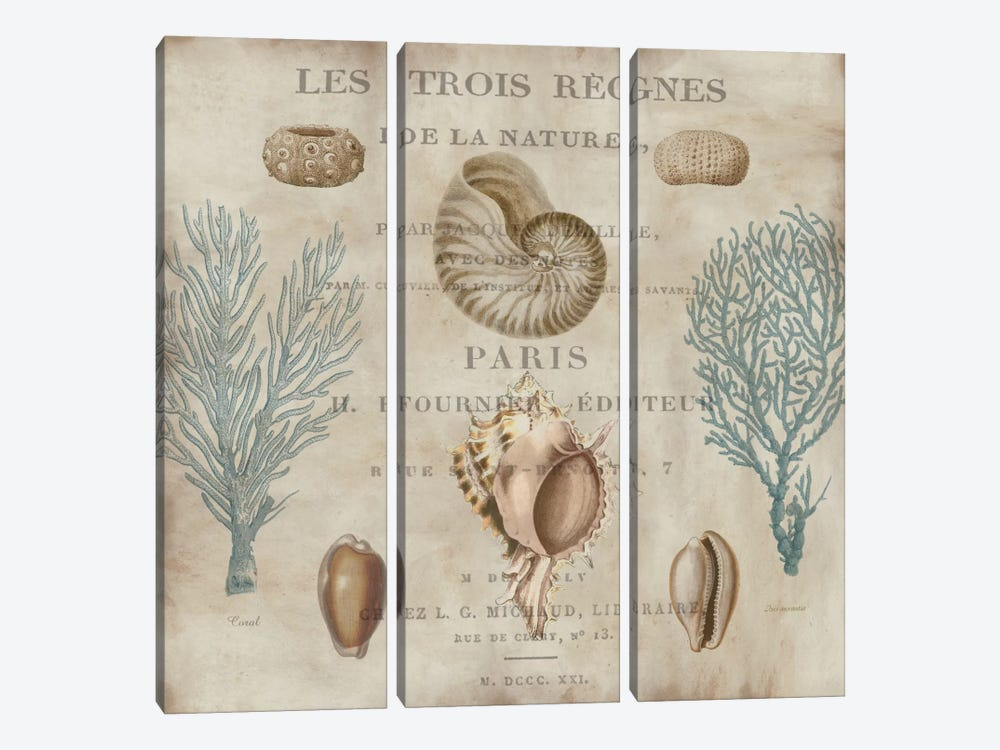 Le Mer II by Deborah Devellier 3-piece Canvas Print