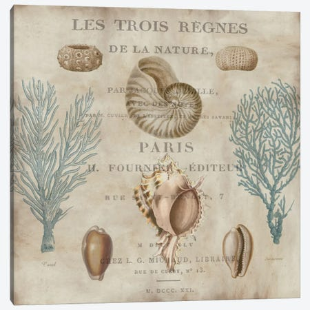 Le Mer II Canvas Print #DEV14} by Deborah Devellier Canvas Print