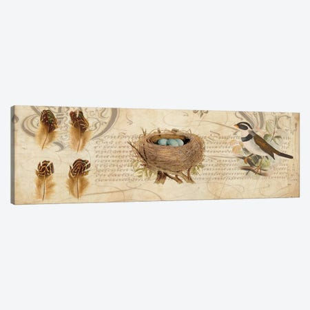 Nesting I Canvas Print #DEV15} by Deborah Devellier Art Print