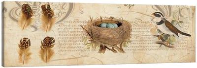 Nesting I Canvas Art Print