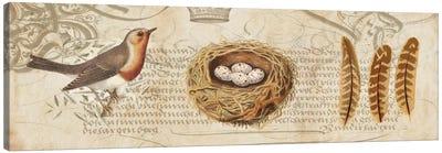 Nesting II Canvas Art Print