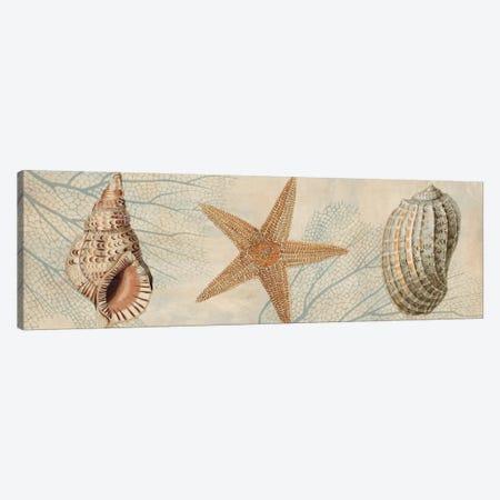 Ocean Companions I Canvas Print #DEV17} by Deborah Devellier Art Print