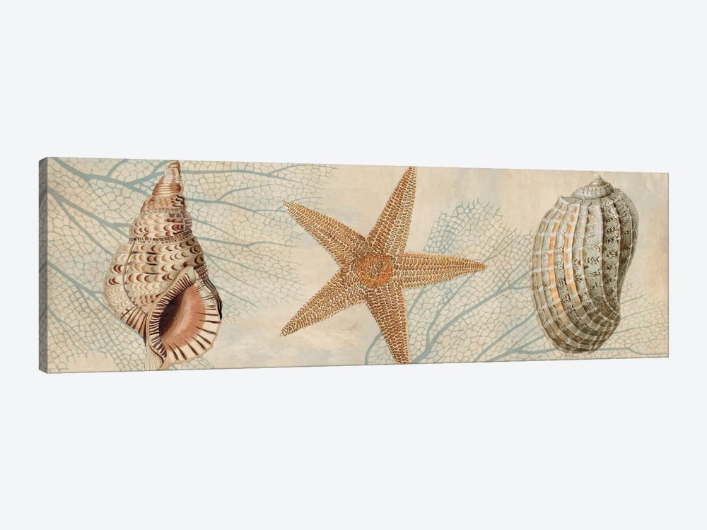 Ocean Companions I by Deborah Devellier 1-piece Canvas Artwork