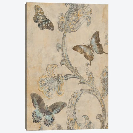 Papillion Decoratif I Canvas Print #DEV21} by Deborah Devellier Art Print