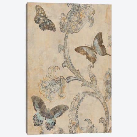 Papillion Decoratif I Canvas Print #DEV21} by Deborah Devellier Art Print