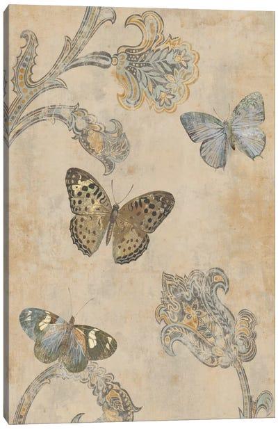 Papillion Decoratif II Canvas Art Print