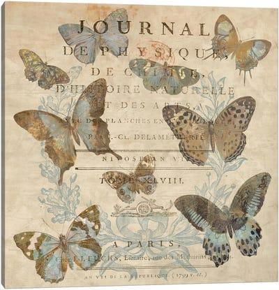 Papillon I Canvas Print #DEV23