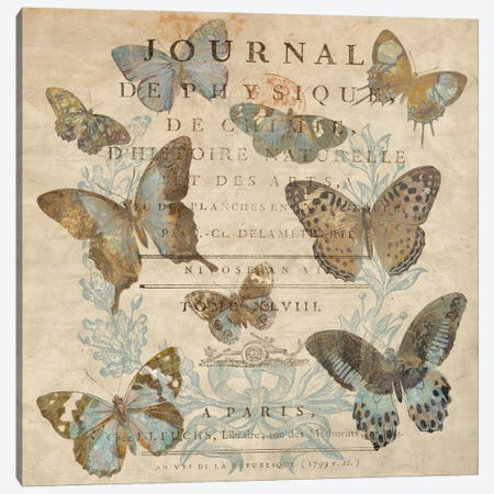 Papillon I 3-Piece Canvas #DEV23} by Deborah Devellier Art Print