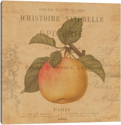 Pomme Canvas Art Print