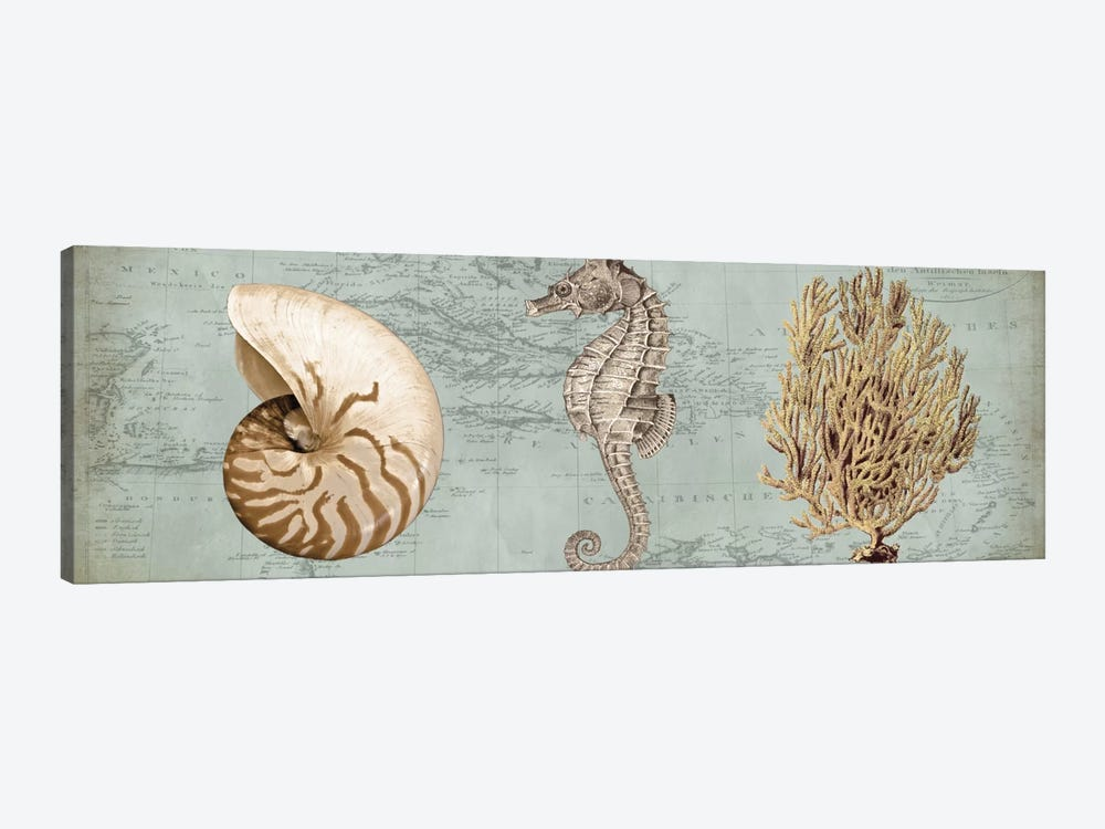 Sea Treasures I by Deborah Devellier 1-piece Canvas Art Print