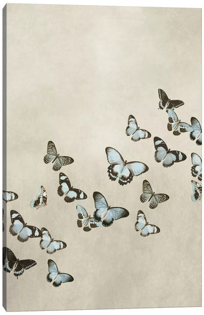 Spring Flight I Canvas Art Print