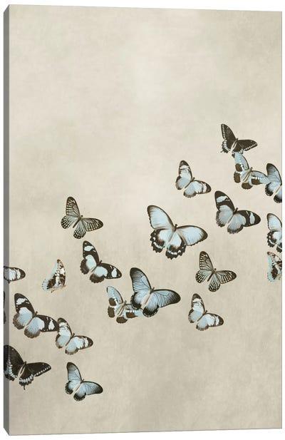 Spring Flight I Canvas Art Print