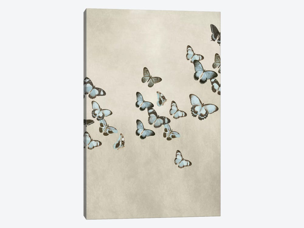 Spring Flight II by Deborah Devellier 1-piece Art Print