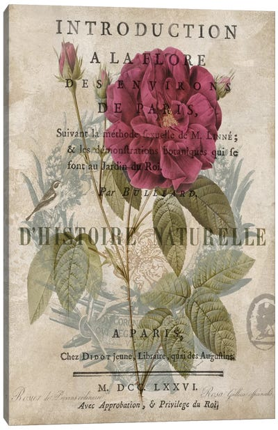 Botanique I Canvas Art Print