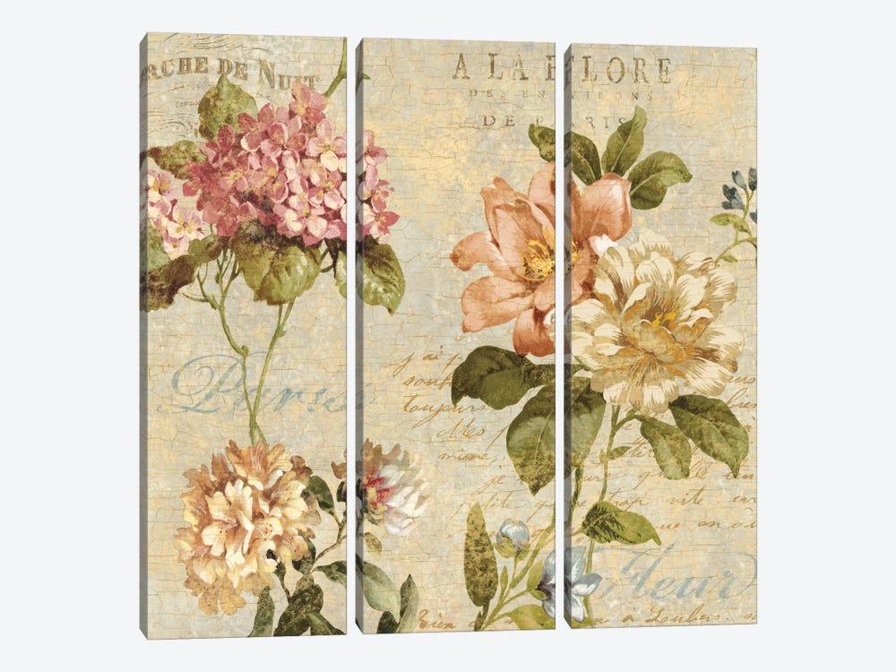 Fleur Paris I by Deborah Devellier 3-piece Canvas Artwork