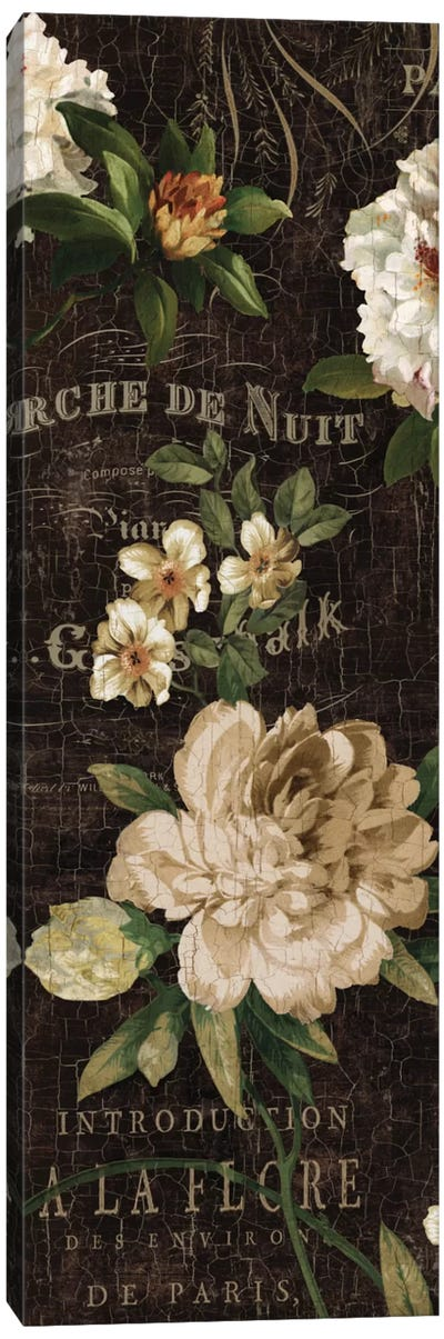 Fleurs Antique I Canvas Art Print