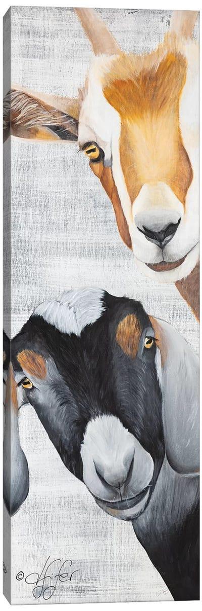 Shenanigans Canvas Art Print