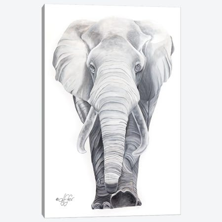What Big Ears I Have Canvas Print #DFI18} by Diane Fifer Canvas Art Print