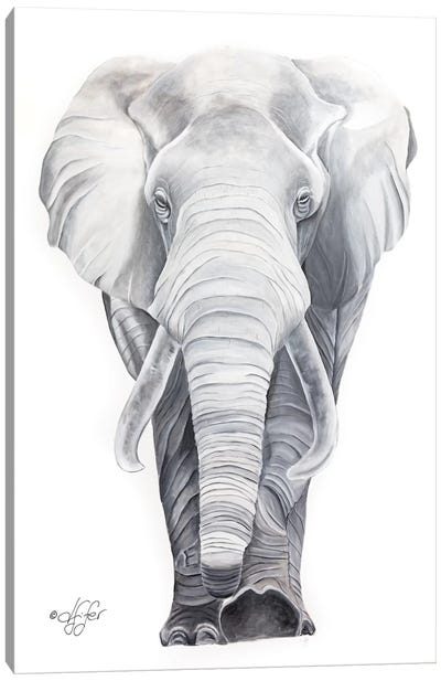 What Big Ears I Have Canvas Art Print