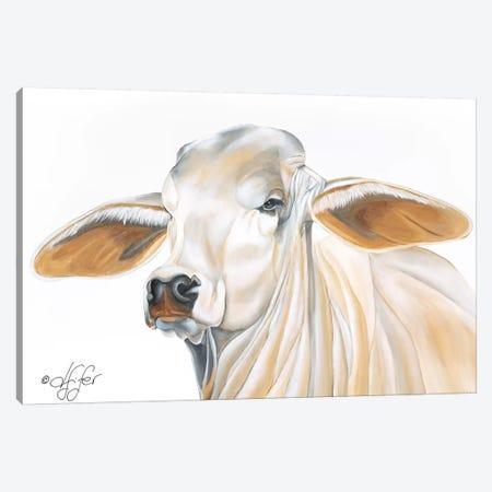 Wrinkles Can Be Beautiful Canvas Print #DFI19} by Diane Fifer Art Print