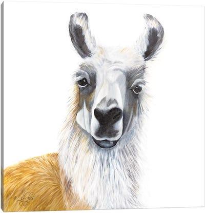 Alpaca Canvas Art Print