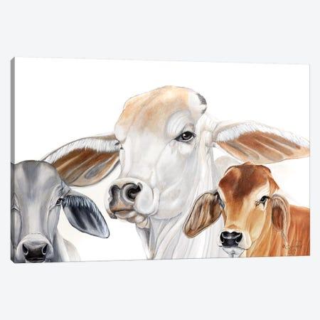 Ranch Life   Canvas Print #DFI31} by Diane Fifer Canvas Print