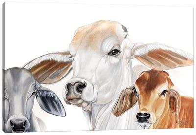 Ranch Life   Canvas Art Print