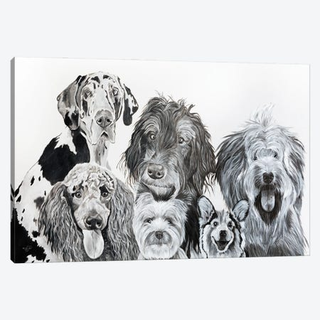 Lots Of Dogs Canvas Print #DFI34} by Diane Fifer Canvas Art