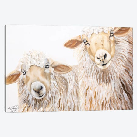 Ba Ba White Sheep Canvas Print #DFI3} by Diane Fifer Art Print