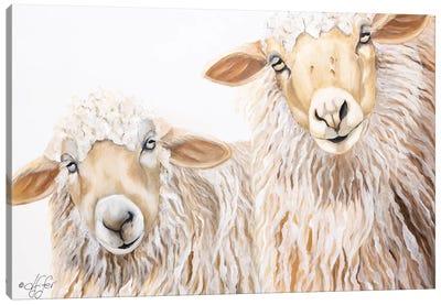 Ba Ba White Sheep Canvas Art Print