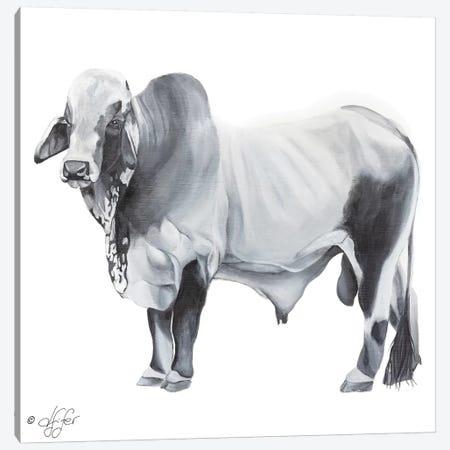 Hey Big Grey Canvas Print #DFI5} by Diane Fifer Canvas Artwork