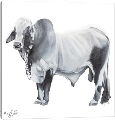 Hey Big Grey Canvas Art Print