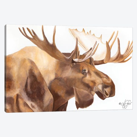 Moose Be Single Canvas Print #DFI9} by Diane Fifer Art Print