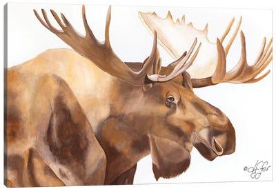Moose Be Single Canvas Art Print