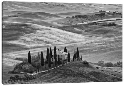 Countryside Landscape In B&W, San Quirico d'Orcia, Siena Province, Tuscany Region, Italy Canvas Art Print