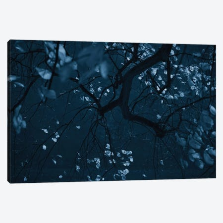Fall Night 3-Piece Canvas #DFU12} by Dorit Fuhg Canvas Art Print